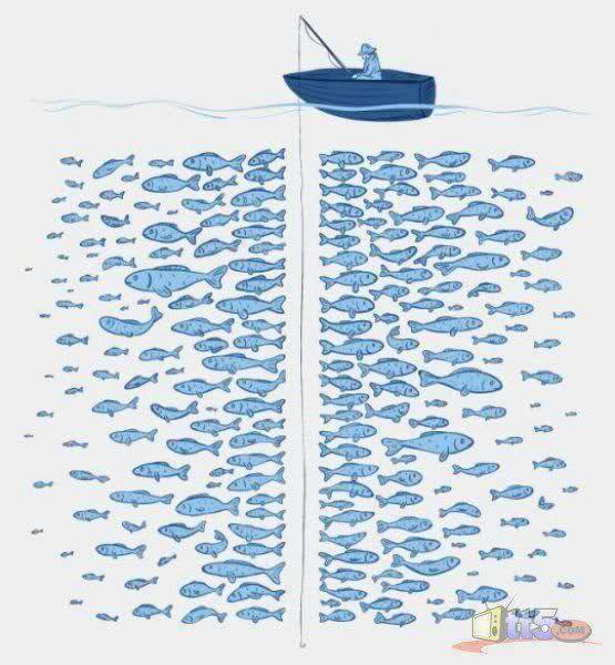What i think of when someone says there are other fish in for Other fish in the sea
