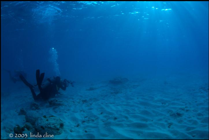 Rendering Underwater Scenes