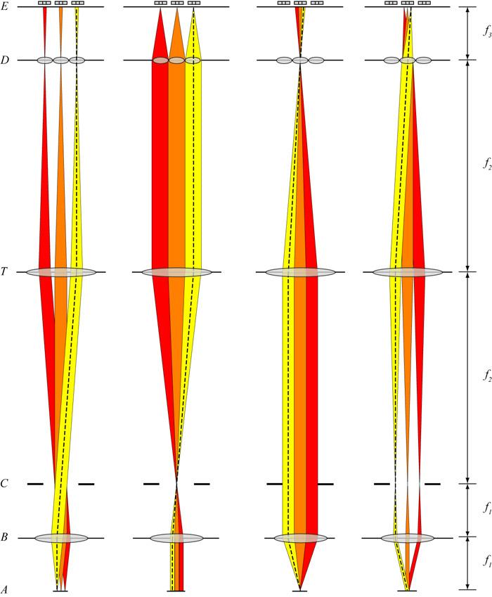 Light field microscopy infinity optics ccuart Images