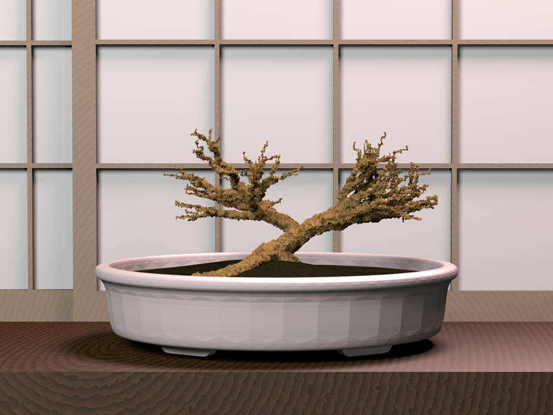 bonsai_FINAL_large_sm.png