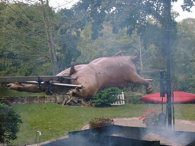 Свински грип на шиш :)